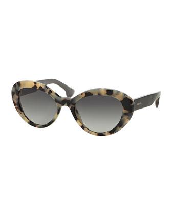 Thick Rim Oval Sunglasses, Havana