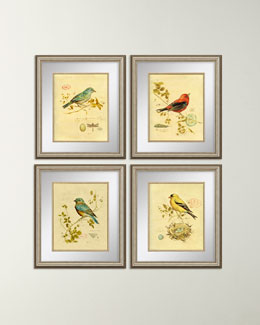 PARAGON DECORS Four Songbird Prints