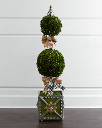 Tulip Check Boxwood Topiary