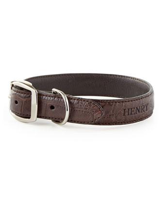 Small Alligator Dog Collar