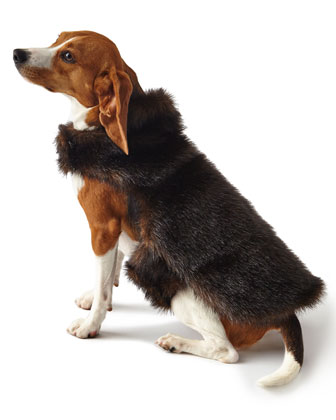 Faux-Fur Medium Dog Coat