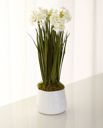 Paperwhites in Bloom Faux-Floral Arrangement