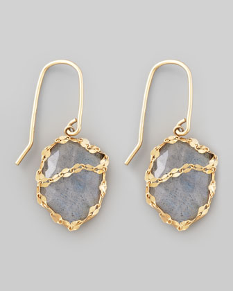 Labradorite Possess Earrings