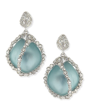 Jardin de Mystere Crystal Caged Lucite Drop Earrings