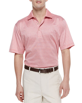 Striped-Knit Polo, Pink
