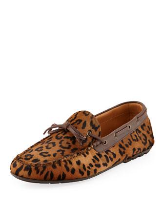 Leopard-Printed Calf-Hair Driver
