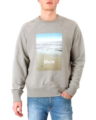 I Want More Sweatshirt, Gray