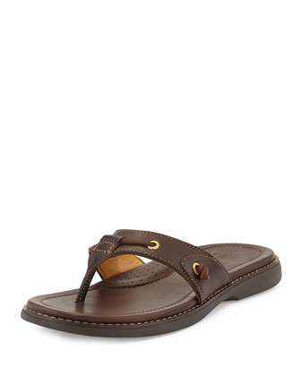 Gold Cup Thong Sandal, Dark Brown