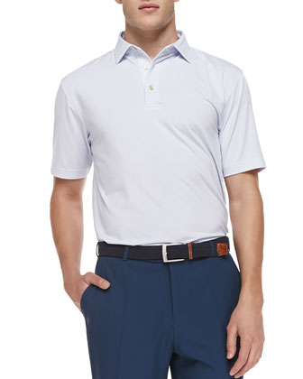 Striped Jersey Short-Sleeve Polo Shirt, White/Storm