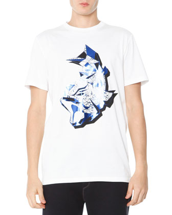 Fish-Raid Graphic Tee, White