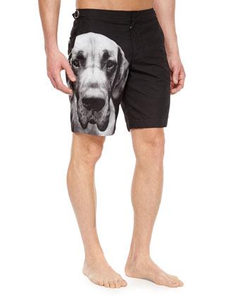 Bulldog Dane-Print Swim Trunks, Black