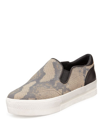 Jungle Snake-Print Slip-On Sneaker