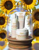 Sunflower Oil Hair Collection