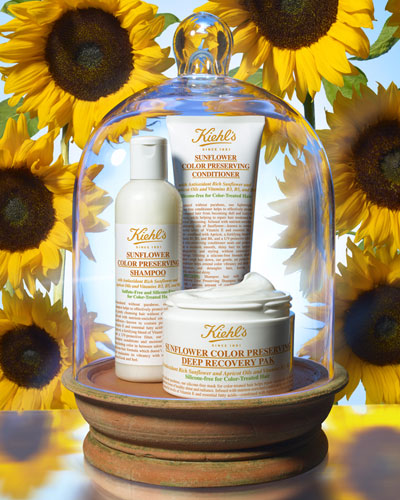 Sunflower Oil Hair Collection