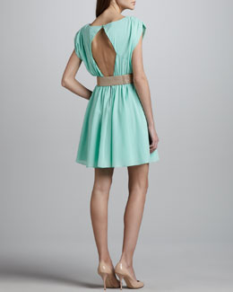 Alice + Olivia Coby Stretch-Silk Dress & Glittered Square-Buckle Belt