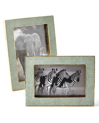 Shagreen Frames