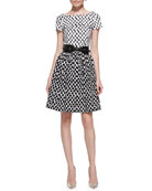 Short-Sleeve Polka-Dot Contrast Dress & Contoured Belt