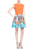 Klynn Crewneck Sleeveless Top & Sotra Printed Pleated Full Skirt