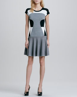 Diane von Furstenberg Renee Colorblock Drop-Waist Dress