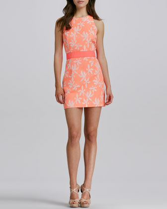 Sonya Two-Tone Short Jacquard Dress