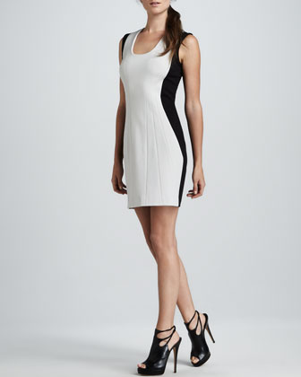 Carmelle Sheath Dress