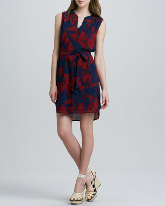 Zenith Giraffe-Print Dress