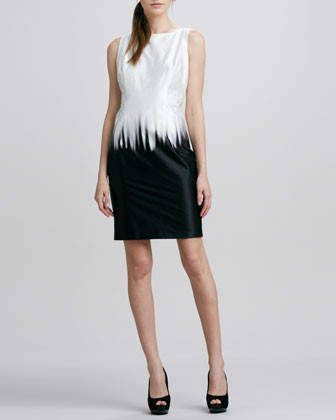Eloise Warp Bicolor Sheath Dress