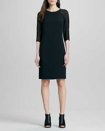 Anne Sheer-Sleeve Dress