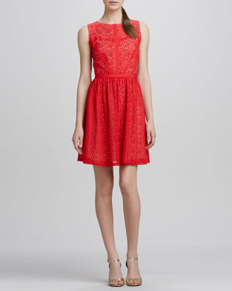 Elle Lace Sleeveless Fit & Flare Dress