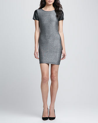 Tory Metallic Leather-Sleeve Dress