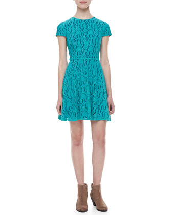 Delphine Waves Lace Dress