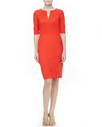 Danton Fitted Ponte Dress