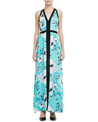 Sina Printed V-Neck Maxi Dress