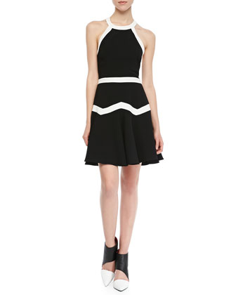 Rogue Bicolor Fit-and-Flare Dress