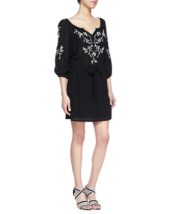 Tough Love Embroidered Voile Dress