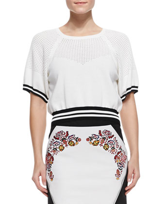 Cropped Mesh/Jersey Sweater & Malbec Embroidered Leather Skirt