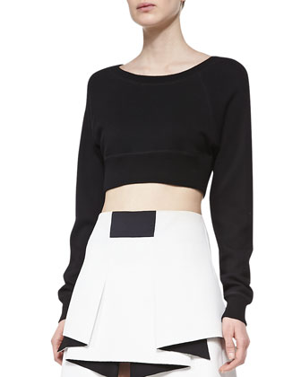 Cropped Long-Sleeve Sweatshirt & Warrior Stretch-Leather Skirt