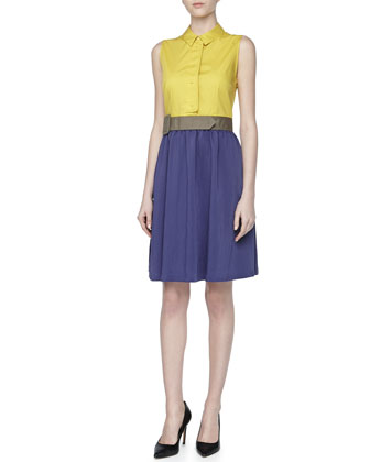 Sleeveless Colorblock Stretch Dress