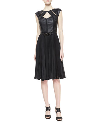 Paloma Leather Bustier & Pleated Skirt Dress