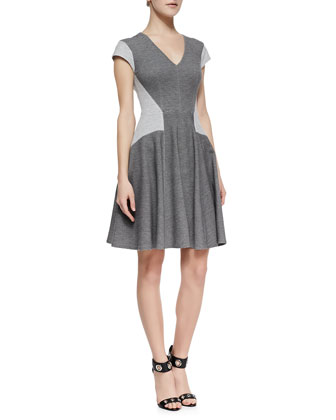 Paneled Ponte Flare Dress