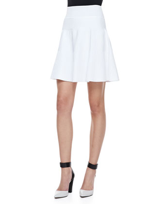 Ribbed Knit Diamond Shell and Ribbed Knit Flare Skirt