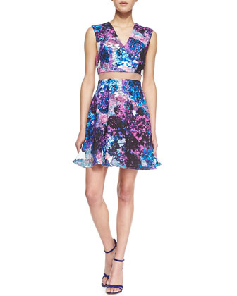 Carressa Sheer-Waist Floral A-Line Dress