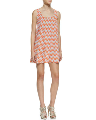 Estelle Printed A-Line Sleeveless Dress