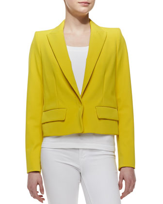 Super-Stretch Snap-Front Blazer, Mimosa Mist