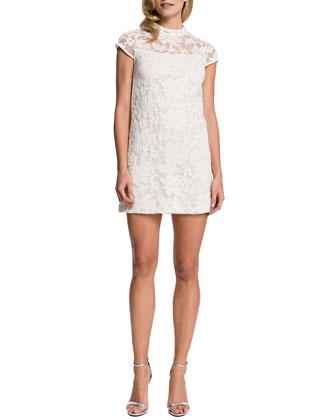 Eisele Cap-Sleeve Embroidered Organza Dress