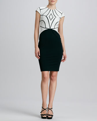 Ricci Two-Tone Leather-Bodice Cocktail Dress
