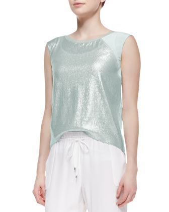 Terra Cap-Sleeve Glitter-Front Blouse, Matte Silver