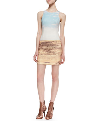 Dale Desert Landscape Sheath Dress