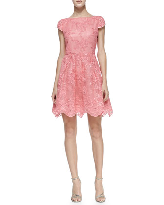 Zenden Scallop Lace Dress