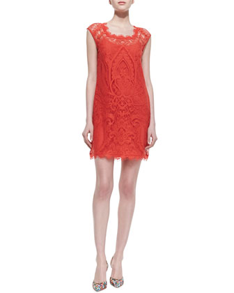 Sleeveless Lace Overlay Cocktail Dress, New Terra Cotta
